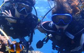 沖縄 青の洞窟 体験ダイビング 口コミ