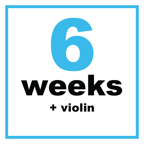 6 Weeks +Violin