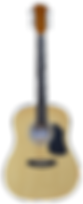 Acoustic Guitar (transparent).png