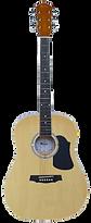 Acoustic Guitar (transparent).png
