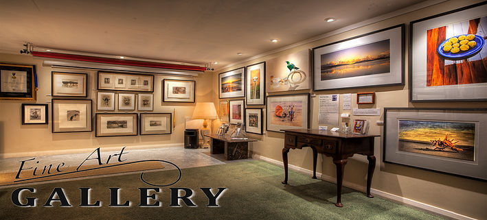 Fine Art,Gallery.Paintings,Photography