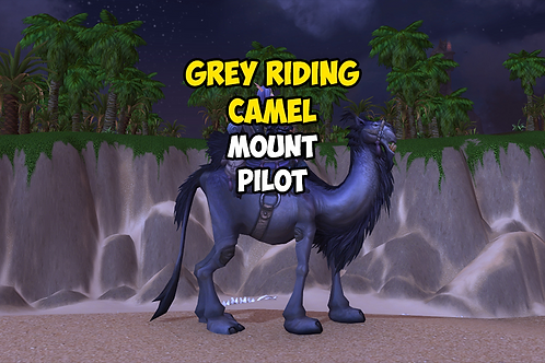 Grey Riding Camel US
