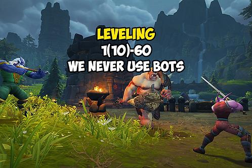 Leveling 1(10)-60
