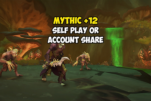 Mythic +12 (Timer FREE) US