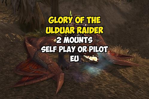 Glory of the Ulduar Raider