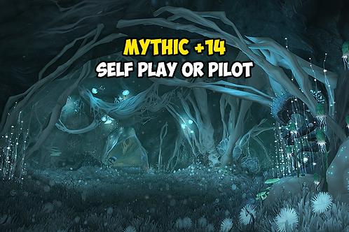 Mythic +14 EU