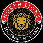 Academy-logo-goldshine-SCARE-10_edited.p