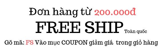 FREE Ship (2).png