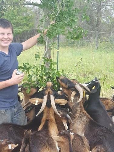 hudson holding branches.jpg