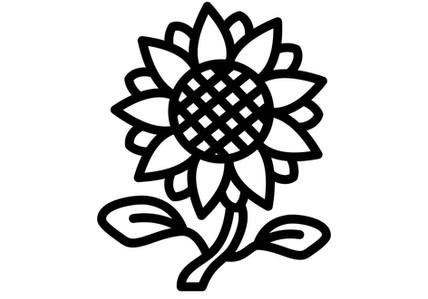 Helianthus Annuus (Sunflower) Seed Oil