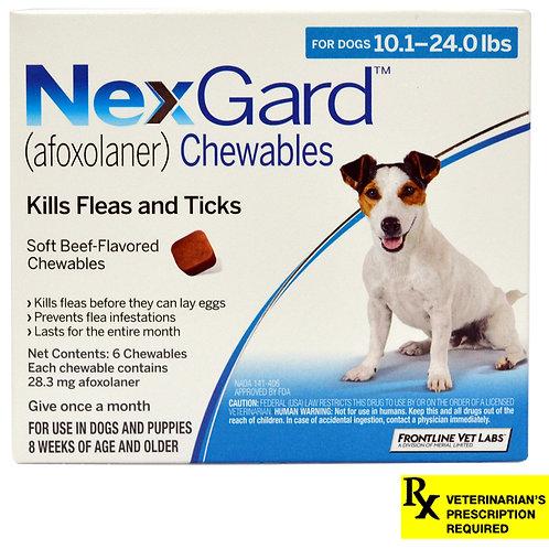 Rx NexGard, Dog  10.1-24lb,  6 month
