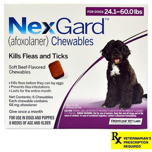 Rx NexGard, Dog 24.1-60lb, 6 month