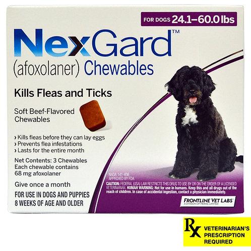 Rx NexGard, Dog  24-60.0lb, 3 month