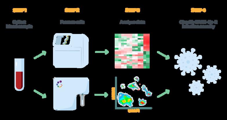 Infectious Disease Workflow