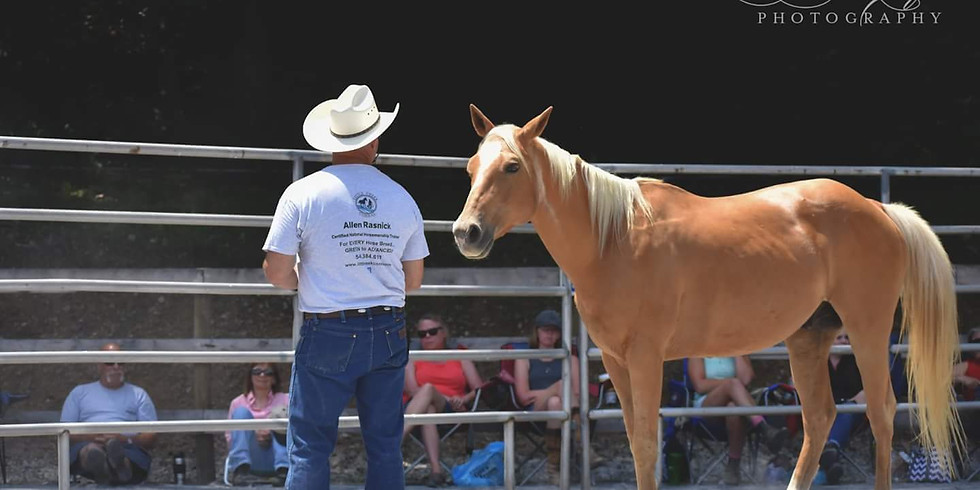 Natural Horsemanship Clinic (1)