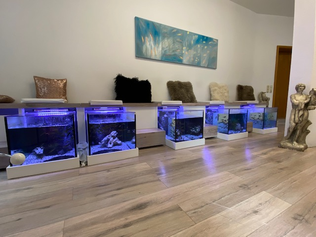 FishSpa Aquarien