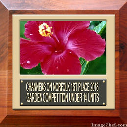 First Place Certificate Garden Competition Norfolk Island