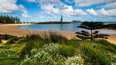 holiday in norfolk island