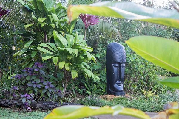 Garden surprises