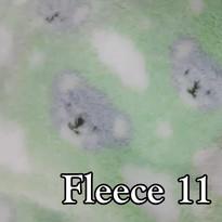 fleece 11.jpg