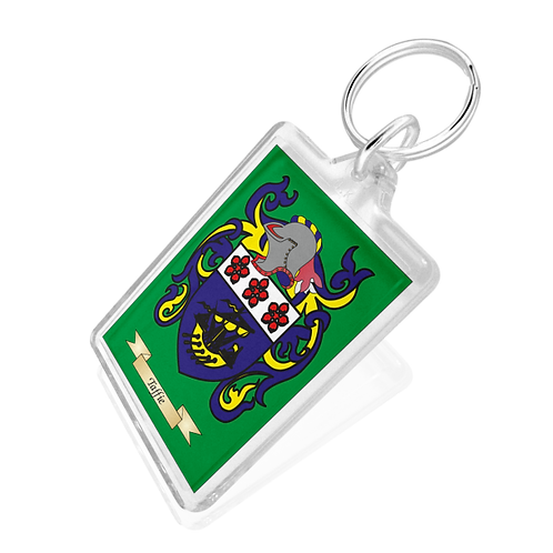 Coat of Arms Keyring