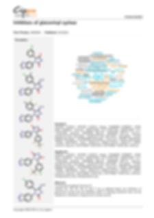 cippix-patents-Website-11.png