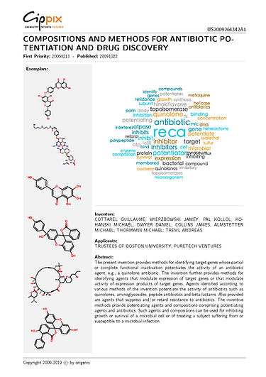 cippix-patents-Website-4.png