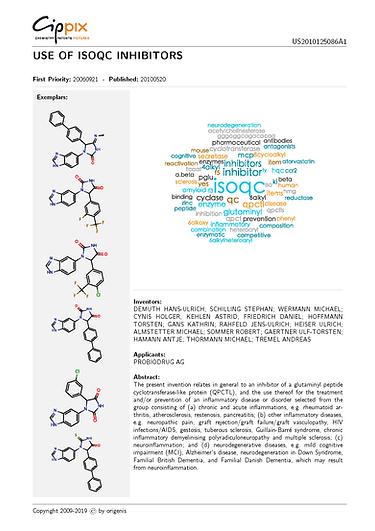 cippix-patents-Website-6.png