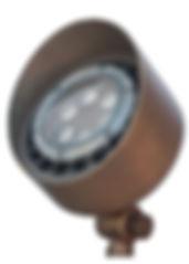 BL300 PAR36 Bullet Light