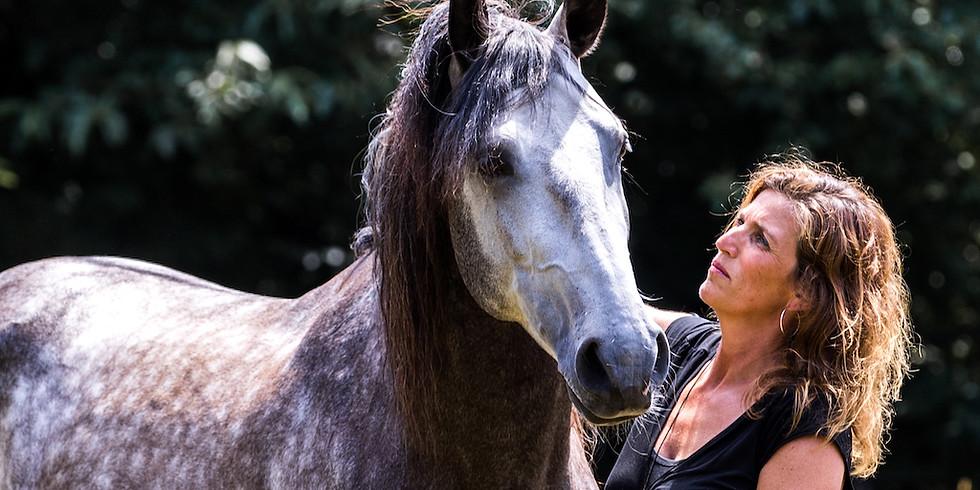 Opleiding systemisch paardencoach | Start 3 februari 2022