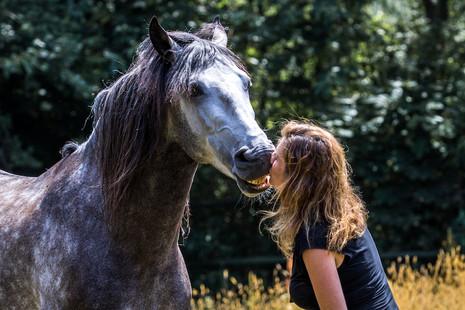 Afbeelding van de relatie Katinka en Idalgo