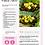 Thumbnail: 20 Fit Latinas Approved Recipes