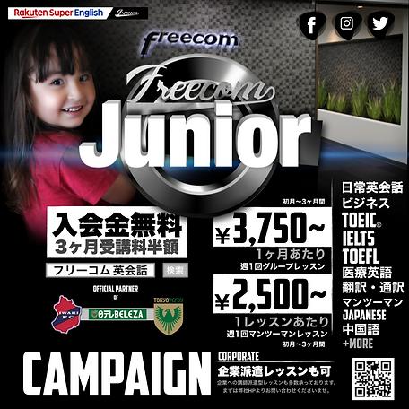 FreecomJunior.png