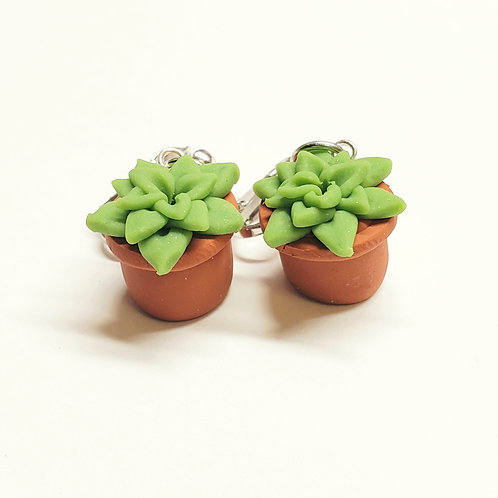 Potted Succulent Clip-on Earrings