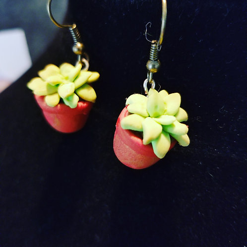 Potted Succulents Earrings