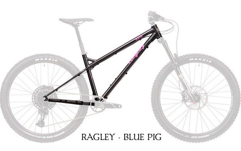 2020 Blue Pig Frame Black.jpg