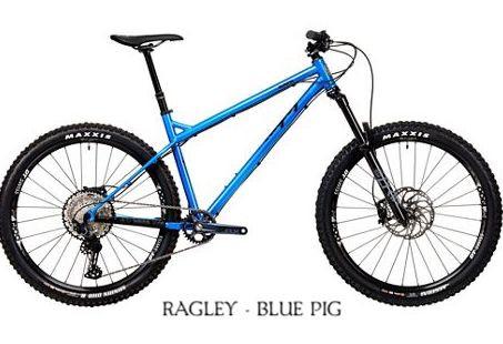 2020 Blue Pig Race Blue.jpg