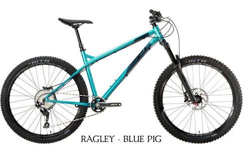 2019 Blue Pig Green.jpg