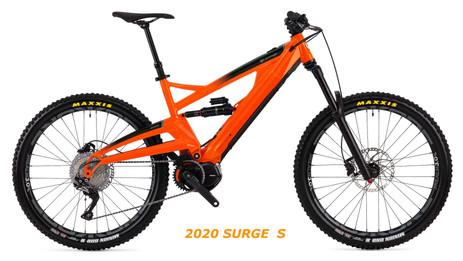 2020 Surge S Fizzy.jpg