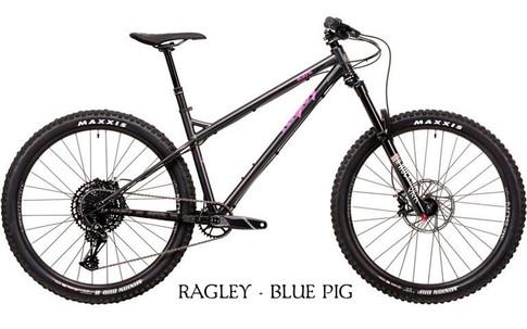 2020 Blue Pig Black.jpg