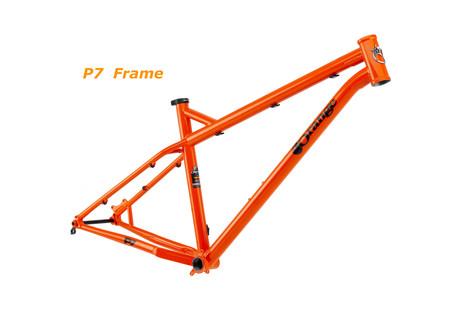 2020 P7 frame.jpg