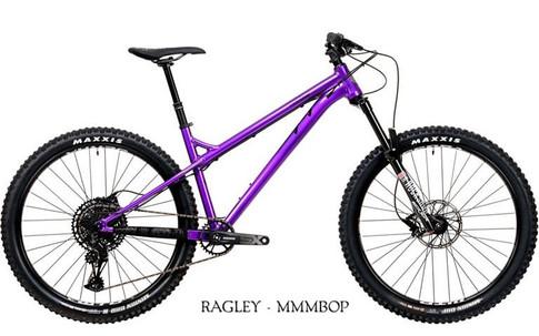 2020 Mmmbop Purple.jpg