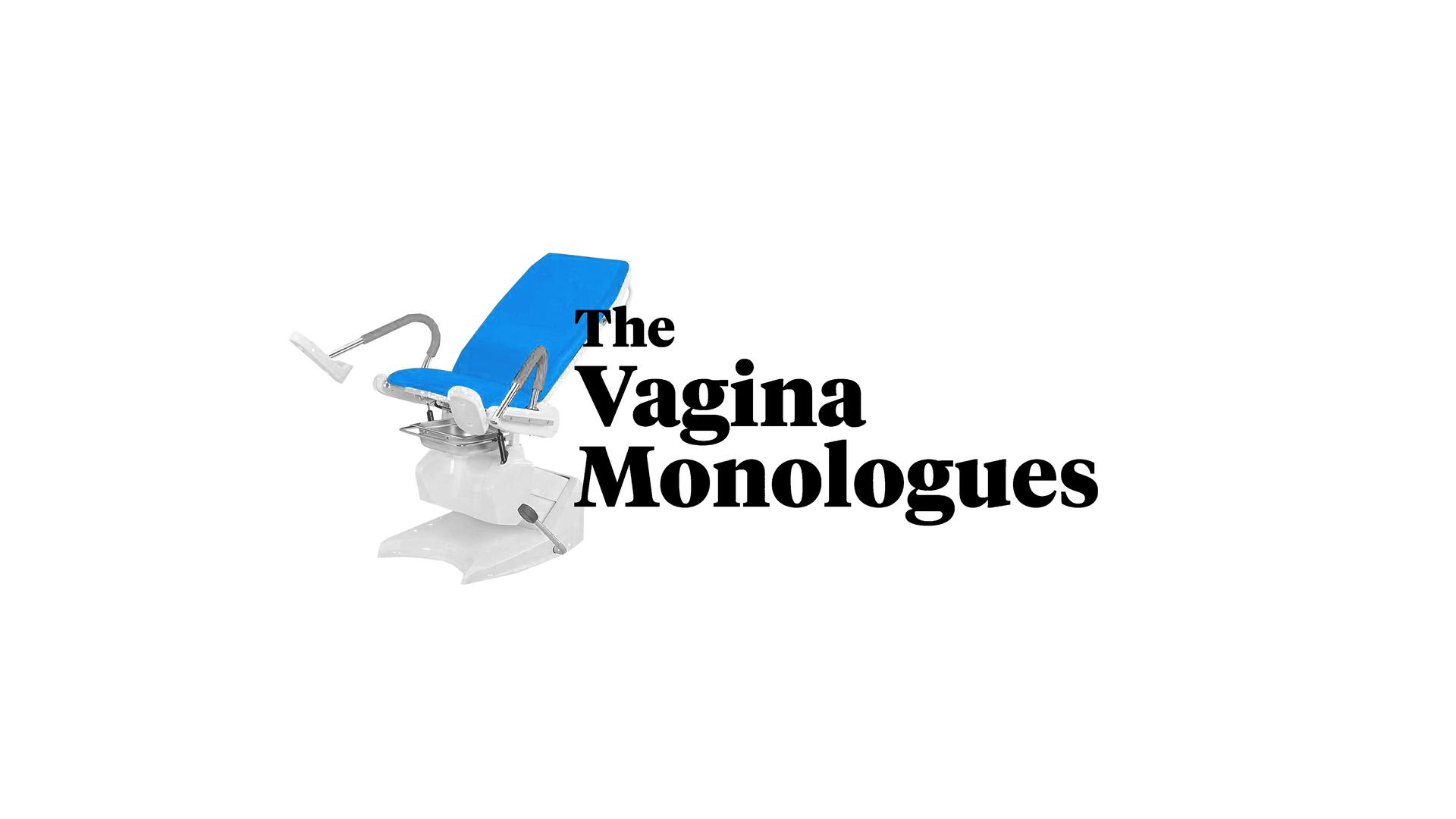 vagmonweb.png