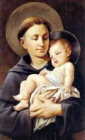 聖アントニオの実際の顔.jpg