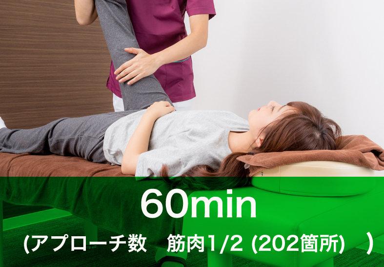 3Dストレッチ60分初回¥4,500(通常¥5,500)