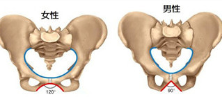 骨盤の位置が正しくないとどういう影響があるの?(骨盤矯正その2)