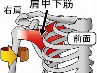 肩を回すときに痛むのは?(肩こりその3)