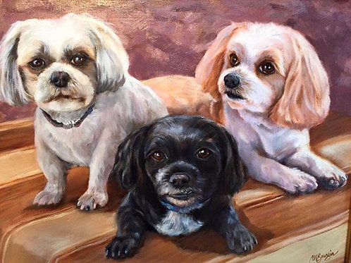 Three Dog Portraits