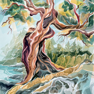 """JC18  """"Arbutus Tree"""""""