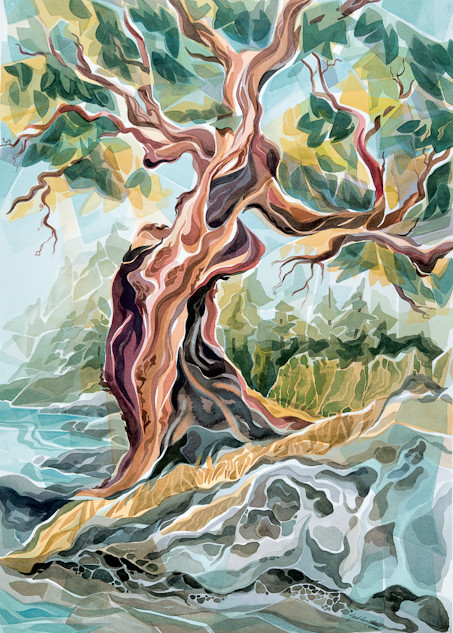 "JC18  ""Arbutus Tree"""